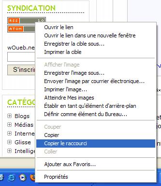 Sous Windows avec Internet Explorer : clic droit sur le lien -> Copier le raccourci