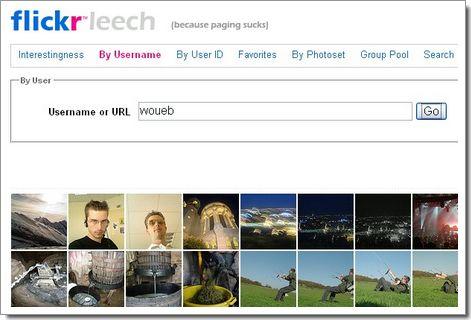 Flickrleech : recherche sur Flickr
