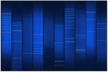 L'ADN de mon blog wOueb.net
