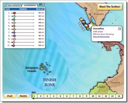 Course de tortue en live, et par GPS : la carte de suivie