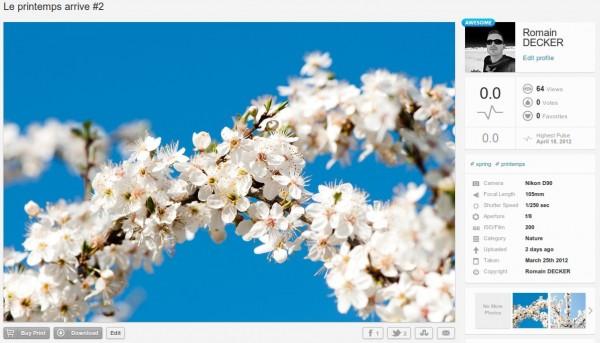 500px : visualisation d'une photo et de ses détails